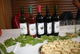 suchodolské víno